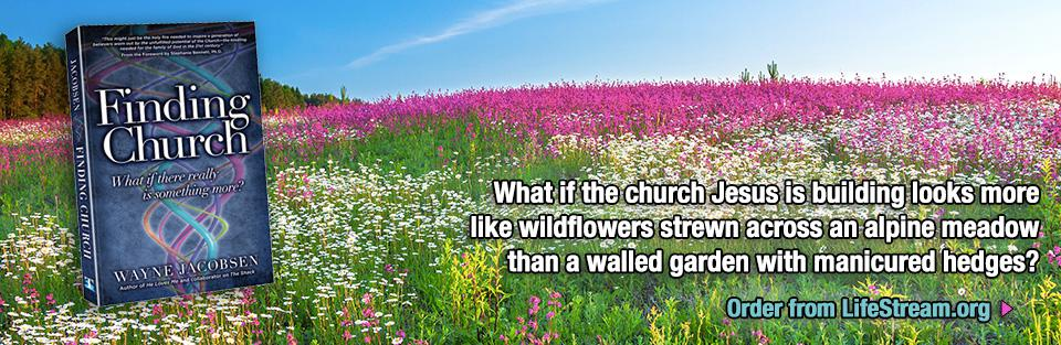 Finding Church - Wildflowers